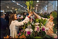 Woman buys orchid plant, Mason Center. San Francisco, California, USA (color)