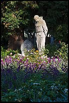 Father Statue and flowers, Mission Dolores garden. San Francisco, California, USA