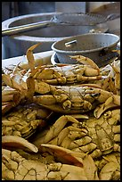 Close-up of crabs, Fishermans wharf. San Francisco, California, USA (color)