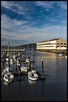 Marina and Fort Mason center. San Francisco, California, USA (color)