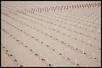 Sea of white and red crosses on Santa Monica beach. Santa Monica, Los Angeles, California, USA