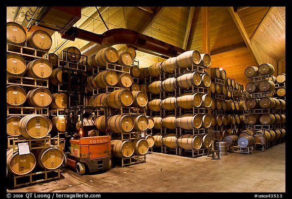 Winery barrel room and forklift. Napa Valley, California, USA (color)