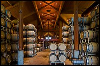 Large room filled with barrels of wine. Napa Valley, California, USA (color)