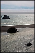 Shimmering waters, Mouth of the Russian River, Jenner. Sonoma Coast, California, USA ( color)