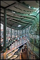Four-story Rainforest dome from above, California Academy of Sciences. San Francisco, California, USA<p>terragalleria.com is not affiliated with the California Academy of Sciences</p>