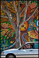Man smoking in car, tree, and mural, Mission District. San Francisco, California, USA ( color)