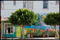 Store, trees and mural, Mission District. San Francisco, California, USA (color)