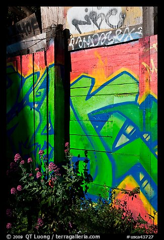 Flowers and painted wall, Mission District. San Francisco, California, USA (color)