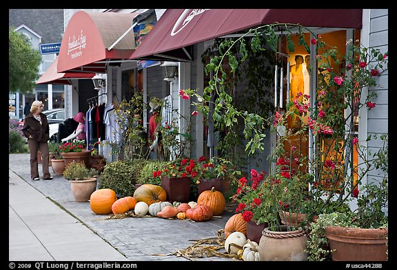 Sidewalk in the fall. Half Moon Bay, California, USA