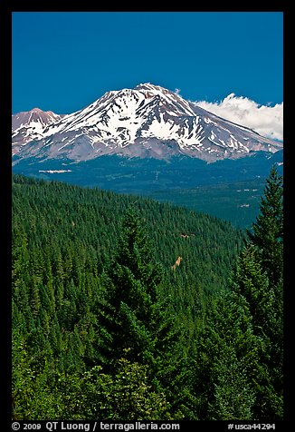 Mount Shasta seen from Castle Crags State Park. California, USA (color)