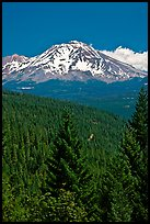 Mount Shasta seen from Castle Crags State Park. California, USA