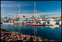 Alameda marina and Oakland skyline. Oakland, California, USA (color)