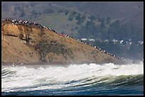 Bluff with spectators as seen from the ocean. Half Moon Bay, California, USA (color)
