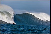 Surfing big wave at the Mavericks. Half Moon Bay, California, USA (color)