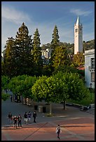 Campus of University of Berkeley with Campanile. Berkeley, California, USA (color)