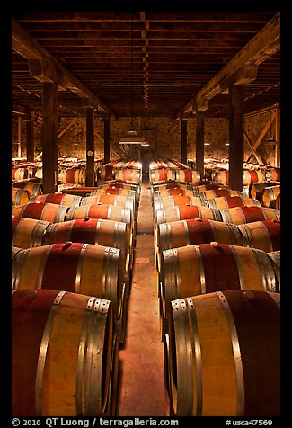 Wine aging in wooden barrels. Napa Valley, California, USA (color)