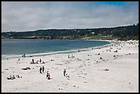 Carmel Beach in summer. Carmel-by-the-Sea, California, USA ( color)