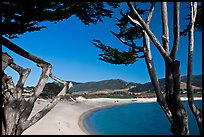 Carmel River Beach framed by Cypress trees. Carmel-by-the-Sea, California, USA ( color)