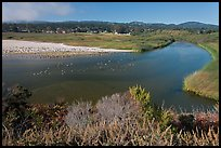 Marsh at the mouth of Carmel River. Carmel-by-the-Sea, California, USA (color)