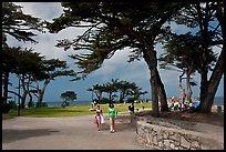Lovers Point Park. Pacific Grove, California, USA ( color)