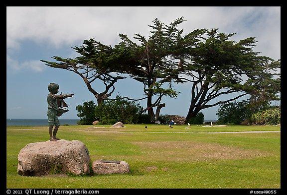 Sculpture, lawn, and cypress, Lovers Point Park. Pacific Grove, California, USA (color)