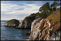 Bluff, China Cove. Point Lobos State Preserve, California, USA (color)
