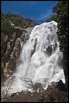 Grizzly Fall, Sequoia National Forest, Giant Sequoia National Monument near Kings Canyon National Park. California, USA ( color)