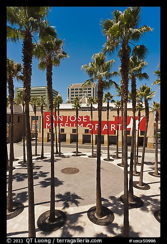 San Jose Museum of Art and palm trees. San Jose, California, USA (color)