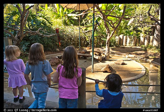 Children watching animal exhibit, Happy Hollow Zoo. San Jose, California, USA