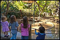 Children watching animal exhibit, Happy Hollow Zoo. San Jose, California, USA (color)