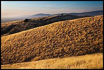 Hills, Santa Teresa County Park. San Jose, California, USA ( color)