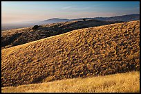 Hills, Santa Teresa County Park. San Jose, California, USA (color)
