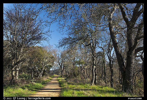 Trail, Almaden Quicksilver Park. San Jose, California, USA