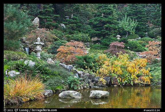 Pond and Japanese garden in autumn. Saragota,  California, USA (color)