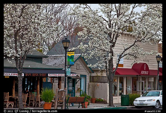 Main street in spring. Saragota,  California, USA (color)