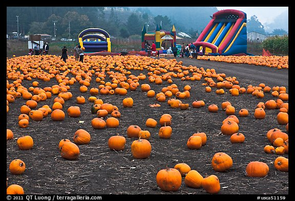 Pumpkin patch and slides. Half Moon Bay, California, USA (color)