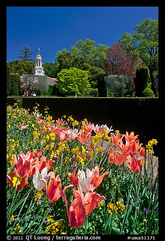 Flowers and garden shop, Filoli estate. Woodside,  California, USA