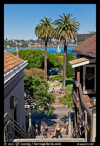 Park and Bay seen from stairs, Sausalito. California, USA