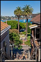 Park and Bay seen from stairs, Sausalito. California, USA ( color)
