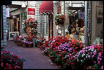 Alley with art galleries and flowers, Sausalito. California, USA (color)