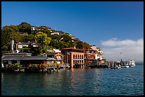 Belvedere Cove, Tiburon. California, USA ( color)