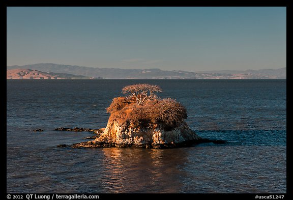Rat Rock, China Camp State Park. San Pablo Bay, California, USA (color)