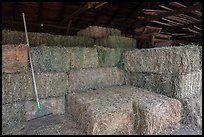 Hay in barn, Ardenwood farm, Fremont. California, USA (color)