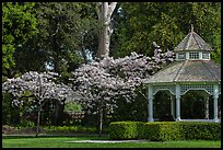 Gazebo and blossoming trees, Ardenwood historic farm regional preserve, Fremont. California, USA (color)