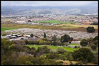 Orchards, fields, and houses from above, Morgan Hill. California, USA (color)