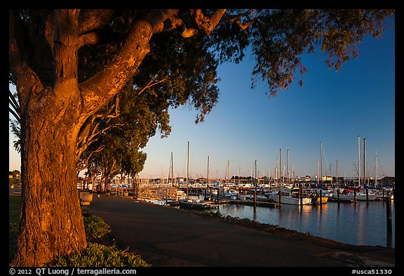 Marina at sunset, Vallejo. San Pablo Bay, California, USA (color)