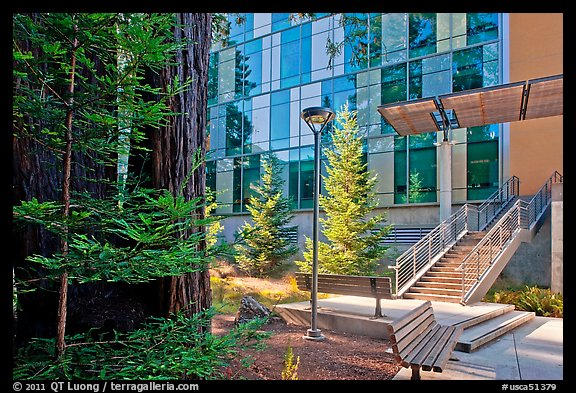redwood trees and modern building ucsc santa cruz california usa
