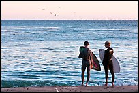 Surfers holding boards, open ocean, and birds. Santa Cruz, California, USA ( color)