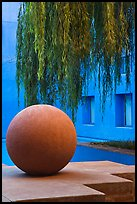 Sphere and willow in courtyard, Schwab Residential Center. Stanford University, California, USA ( color)