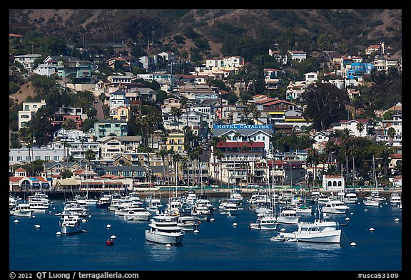 Harbor and houses on hillside, Avalon, Santa Catalina Island. California, USA (color)